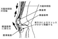 http://kisarazu-chiro.com/swfu/d/auto-uizdCC-2.png